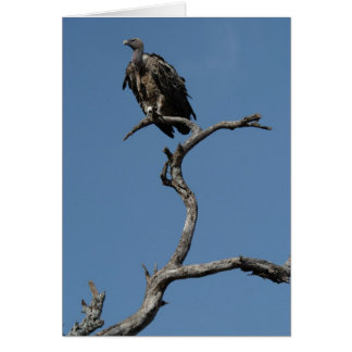 Christmas Vulture Greeting Card