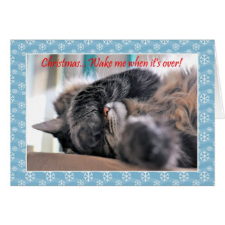Christmas wake me when it's over! Cat Christmas c Greeting Card