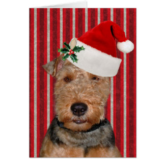 Christmas Welsh Terrier Card