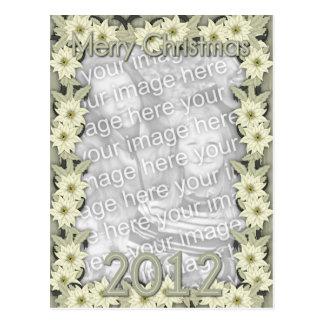 Christmas White Poinsettias 2012 Post Card