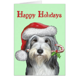 Christmas With Jazz The Bearded Collie Greeting Card