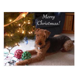 Christmas with Madeleine Postcard