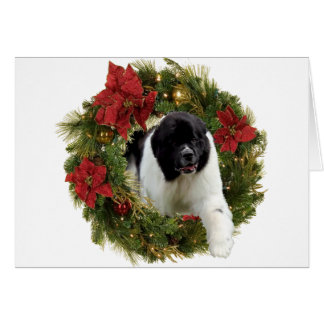 Christmas Wreath Newf Landseer Card