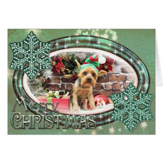 Christmas - Yorki - Teddy Greeting Card