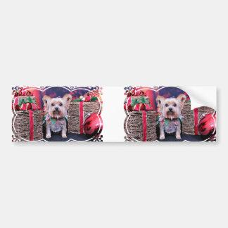 Christmas - Yorkie - Ayla Bumper Sticker