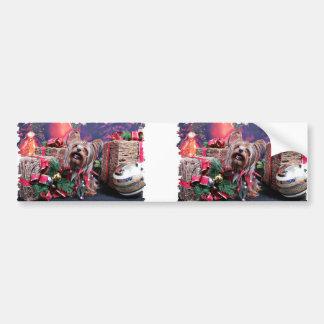 Christmas - Yorkie - Chase Bumper Sticker