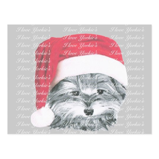 Christmas Yorkie Dog Postcard