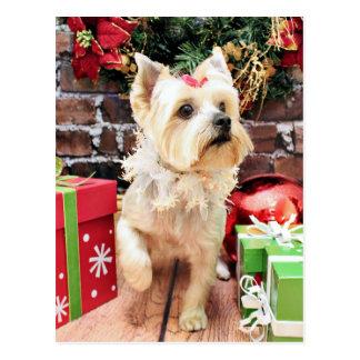 Christmas - Yorkie - Dorie Post Card