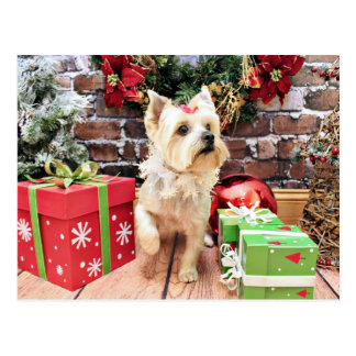 Christmas - Yorkie - Dorie Postcard