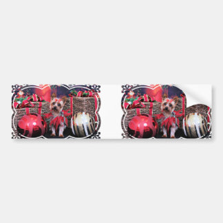 Christmas - Yorkie - Junie Bumper Sticker