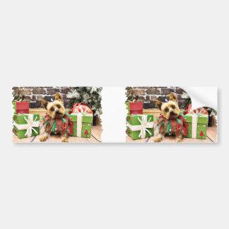Christmas - Yorkie - Junie Bumper Stickers