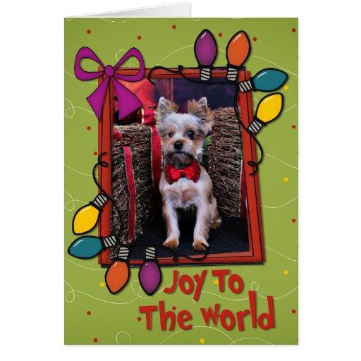 Christmas - Yorkie - Perseus Greeting Cards