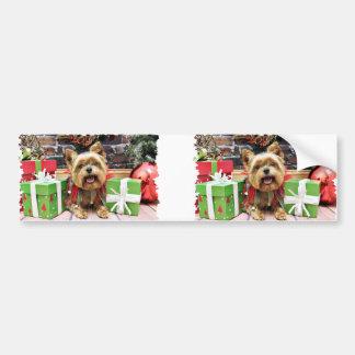 Christmas - Yorkie - Sunny Bumper Sticker