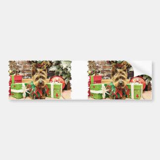 Christmas - Yorkie - Suzy Bumper Sticker