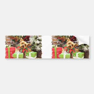 Christmas - Yorkie - Teddy Car Bumper Sticker