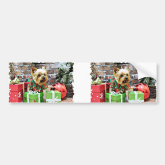 Christmas - Yorkie - Willie Car Bumper Sticker