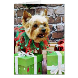 Christmas - Yorkie - Willie Greeting Card