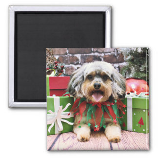 Christmas - YorkiPoo - Oliver Square Magnet