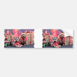 Christmas - Yorkshire Terrier - Chloe and Rocky Bumper Stickers
