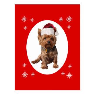 Christmas Yorkshire Terrier Dog in Santa Hat Postcard