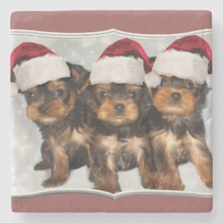 Christmas yorkshire terrier puppies stone coaster