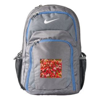 chromatic magic of the autumn    Nike  Backpack