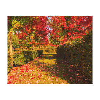 chromatic magic of the autumn on  wrapped  canvas canvas print