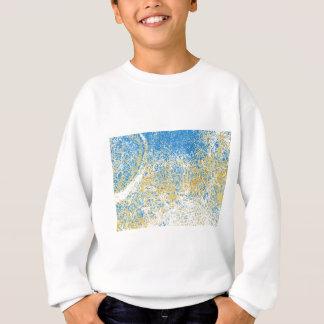 chrome elephant reversed sweatshirt