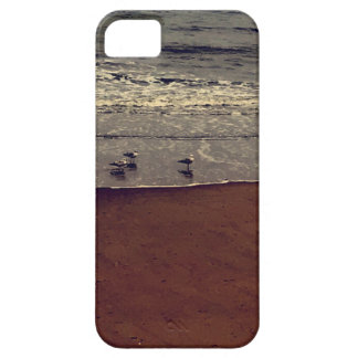 Chrome Seagulls Case For The iPhone 5