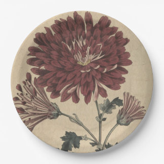 Chrysanthemum 9 Inch Paper Plate