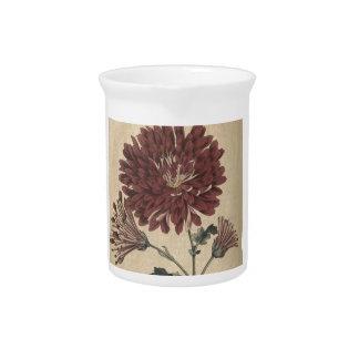 Chrysanthemum Beverage Pitchers