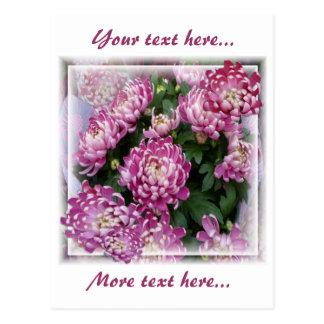 Chrysanthemum Bouquet Post Card