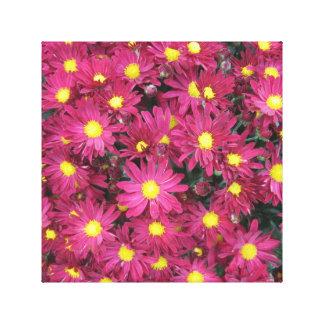 Chrysanthemum Cluster Garden Purple Gallery Wrapped Canvas
