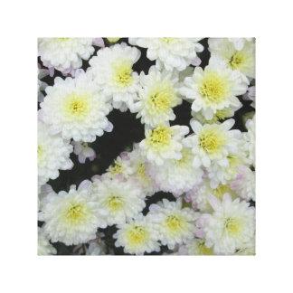 Chrysanthemum Cluster Garden White Gallery Wrap Canvas