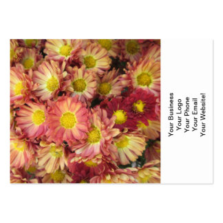 Chrysanthemum Cluster Garden Yellow Pink Business Cards