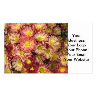 Chrysanthemum Cluster Garden Yellow Pink Pack Of Standard Business Cards