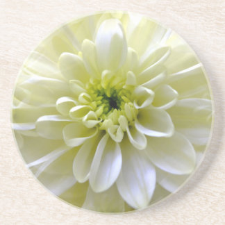 CHRYSANTHEMUM COASTER