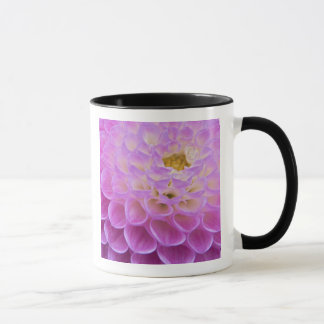 Chrysanthemum flower decorating grave site in mug
