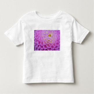 Chrysanthemum flower decorating grave site in toddler T-Shirt