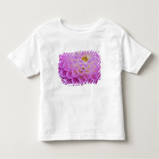 Chrysanthemum flower decorating grave site in toddler T-Shirt