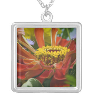 Chrysanthemum flower silver plated necklace