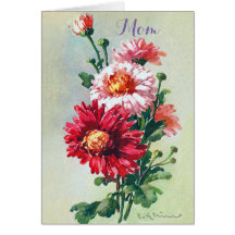 Chrysanthemum Flowers Mother's Day Greeting Card