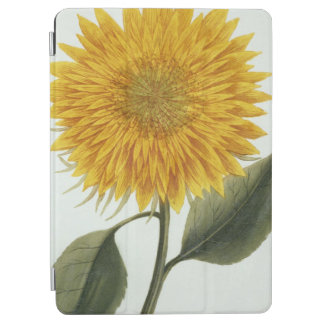 Chrysanthemum Indicum from 'Pythanthoza Iconograph iPad Air Cover