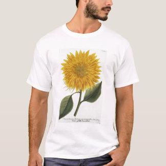 Chrysanthemum Indicum from 'Pythanthoza Iconograph T-Shirt