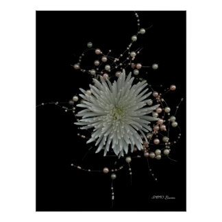 Chrysanthemum & Pearls Poster