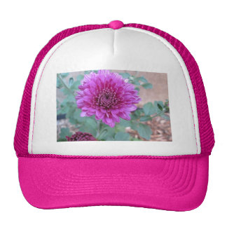 Chrysanthemum Purple Floral Hat