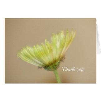Chrysanthemum Thank you Card