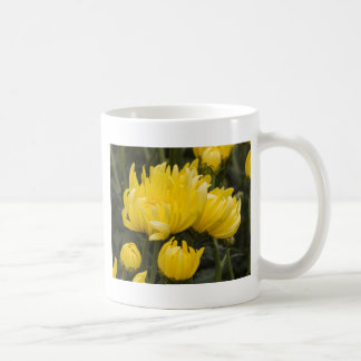 chrysanthemums in the garden coffee mug