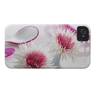 Chrysanthemums iPhone 4 Cover