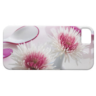 Chrysanthemums iPhone 5 Cases
